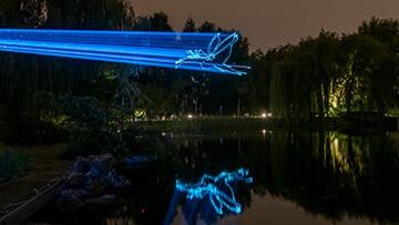 Chinesisches Mondfest 2017 Laserprojektion auf Bäume Drache